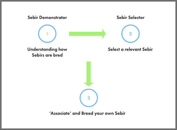 How the Sebir website works